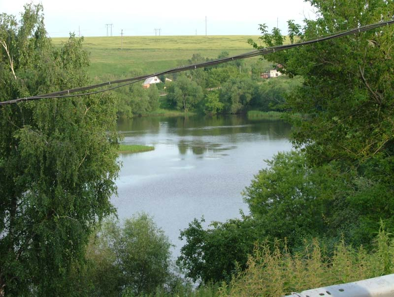 река веневка в тульской области рыбалка